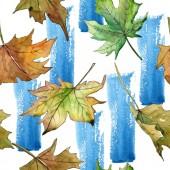 Fotografie Maple leaves pattern in a watercolor style.