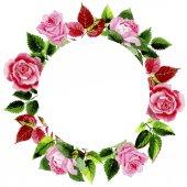 Fényképek Levelei akvarell stílusú Rózsa koszorú