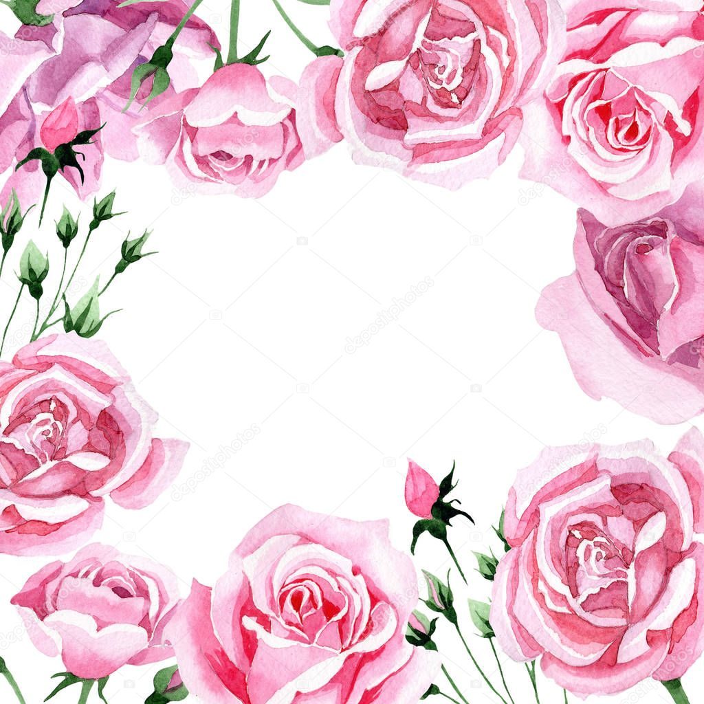 Wildflower pink tea rosa flower frame in a watercolor style.