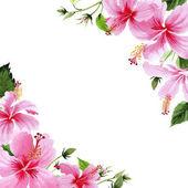 Vadvirág hibiscus pink flower keret akvarell stílusú