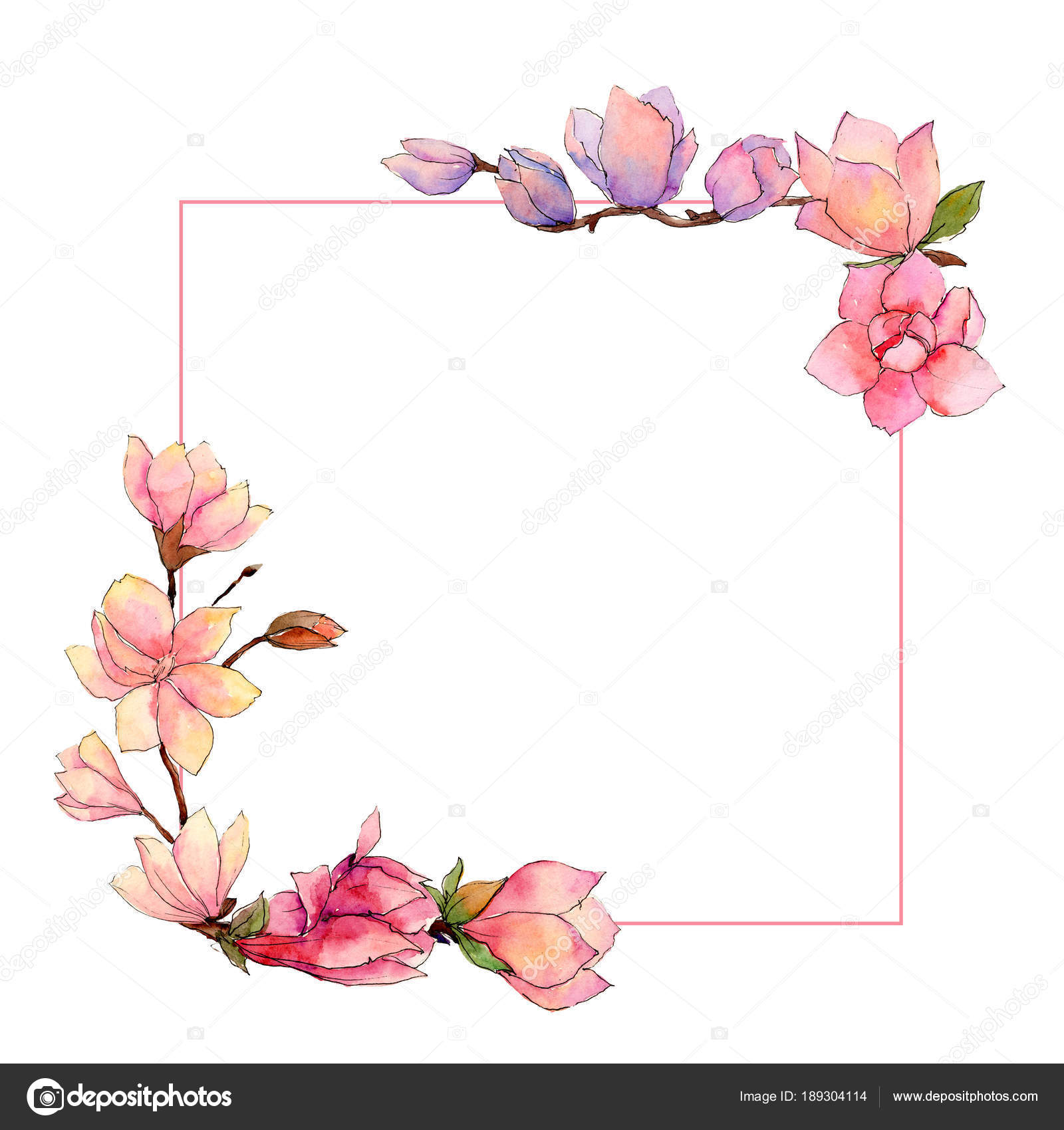 Wildflower Magnolia Flower Frame In A Watercolor Style Stock