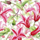 Piros iszalag. Virágos botanikai virág. Vad tavaszi levél vadvirág minta