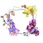 Fényképek Színes orchidea. Virágos botanikai virág. Vad tavaszi levél vadvirág keret