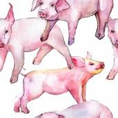 Fotografie Wildes Tier Schwein in ein Aquarell stilmuster