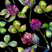 Wildflower clover flower in a watercolor style pattern.