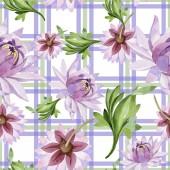 Rózsaszín tavirózsa. Virágos botanikai virág. Vad tavaszi levél vadvirág minta