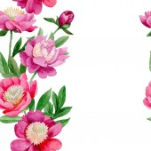 Pink peony. Floral botanical flower. Wild summer leaf wildflower pattern.