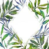 Vrbové větve v akvarel styl rámečku