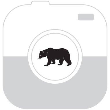 Bear line icon