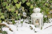 Krásná bílá Lucerna ve sněhu
