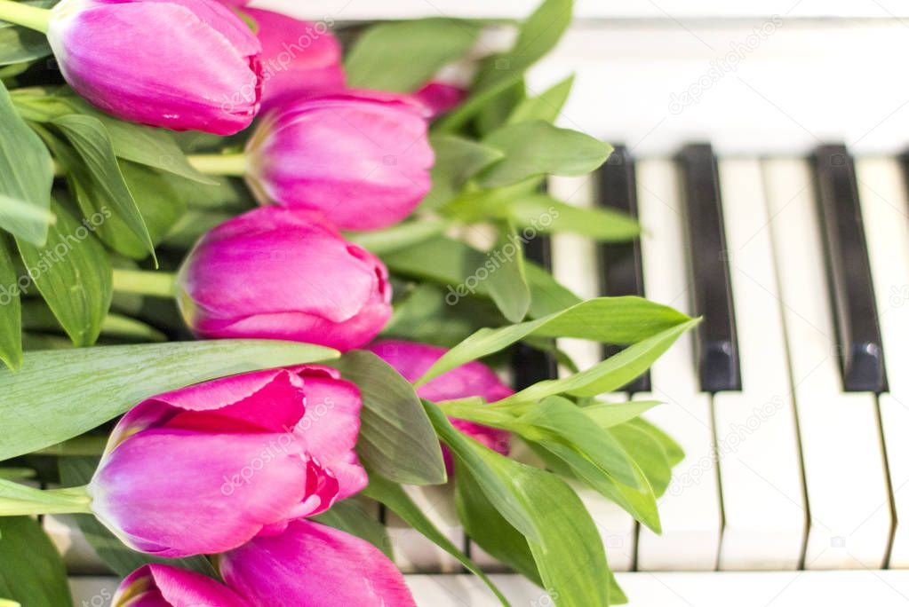 картинки тюльпаны и пианино мамишев была ранее