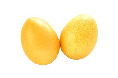Eggs gold on white background