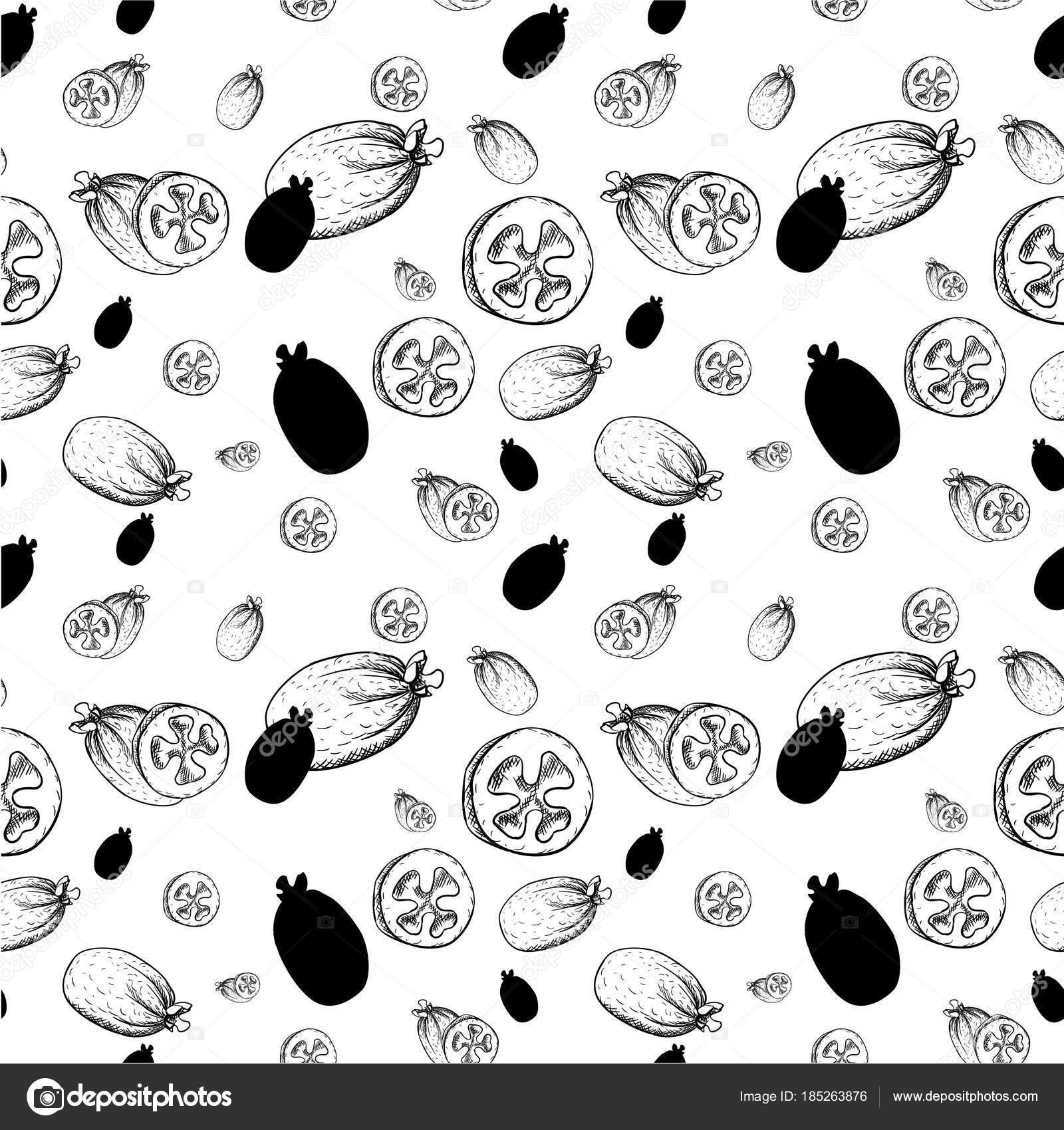 Icono de vector de feijoa, bosquejo dibujado mano de exóticas frutas ...