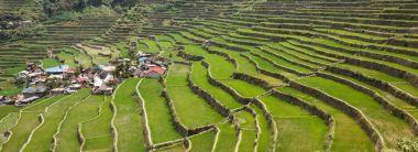 Batad rice field terraces in Ifugao province, Banaue, Philippines