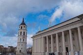 Katedrála St. Stanislav a Vladislav St. Vilnius, Litva Evropa
