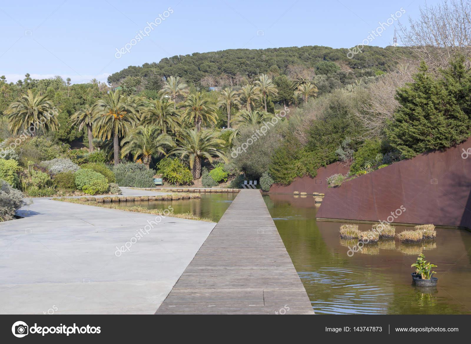 parque jard n bot nico parc de montjuic barcelona