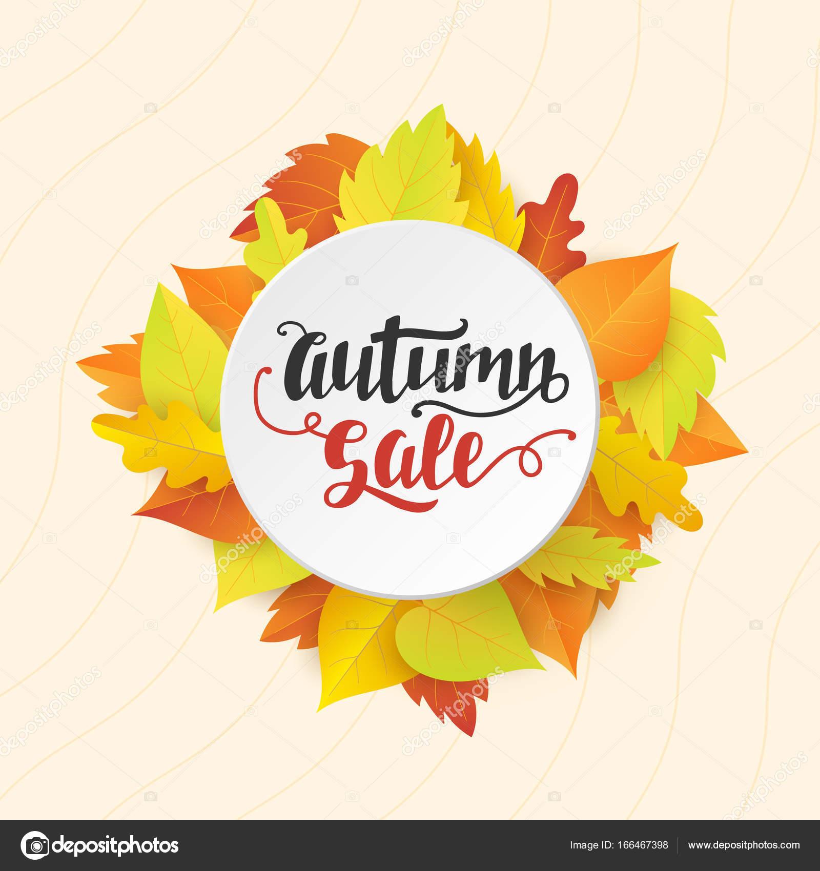 Herbst Sale Banner Vorlage mit leuchtend bunten Herbstlaub ...