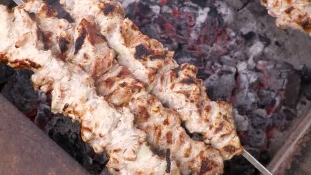Vaření kebab na uhlí. Grilovaný vepřový špíz. Video klip 4k, Uhg, Ultra Hd