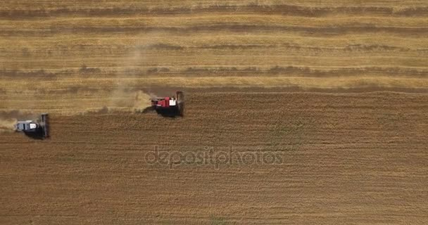 A betakarítás mező traktorok