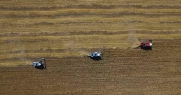 Tractors on harvest field