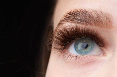 Closeup fashion eyes visage,eyebrows beautiful