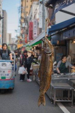 TOKYO  , JAPAN - OCTOBER 12 ,2016 : hang Big dry fish at Tsukiji market Tokyo Japan.