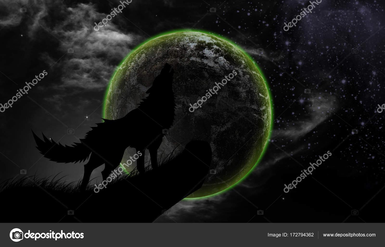 Aullido De Lobos Luna Llena Foto De Stock Releon8211 172794362