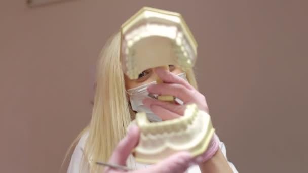 Girl dentist holding artificial jaw clicking teeth. Dentistry. Artificial Dental Model.