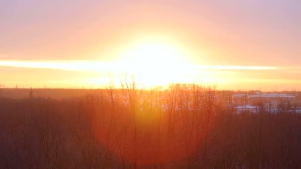 Východ slunce nad lesní sluneční paprsky. Krásná krajina západ slunce nad v lese v zimě