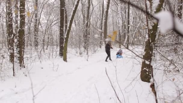 Family walking in a winter park. Parents with child on sled.
