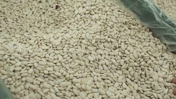 Weiße Bohnen im Store, Nahaufnahme