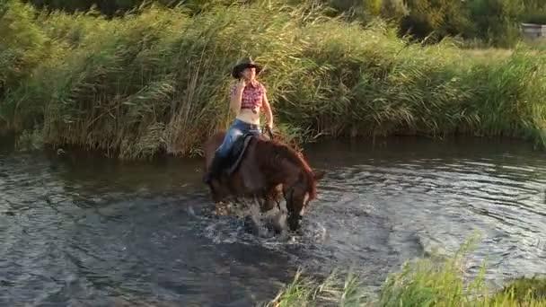 Dívka se koupe koně v jezeře v letním dni