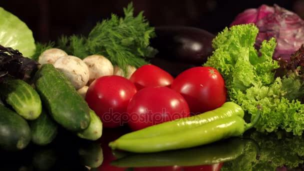 Dívka bere rajče z rozsáhlé sady zeleniny