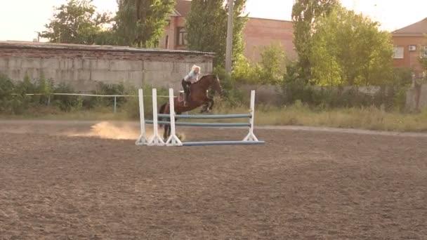 Profi-Reiter springt auf Pferd über Absperrung