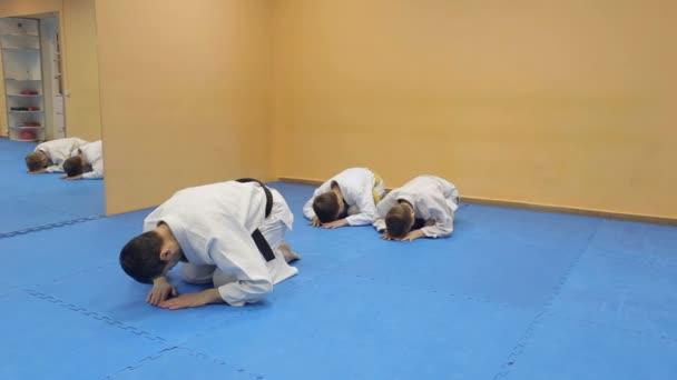 Martial arts oktató képzés gyermekek. Aikido.