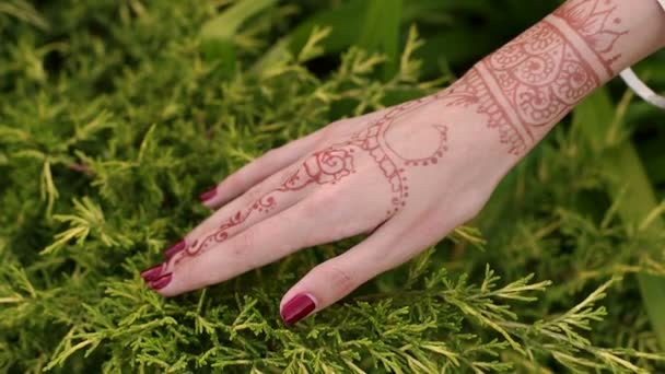 Közelkép az indiai kézi menyasszony mehendi tetoválás