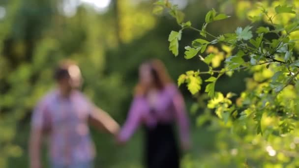 Silhouette couple in love walking in summer Park.