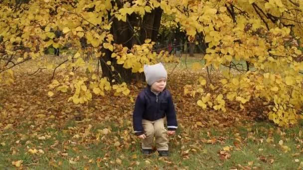 Malý chlapec skákání v parku na podzim.