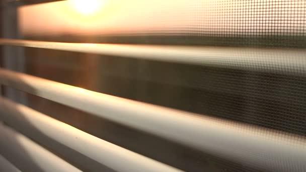 Východ slunce za okenní rolety a sítě proti hmyzu