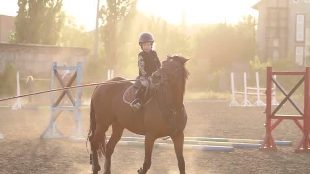 Videa na koni