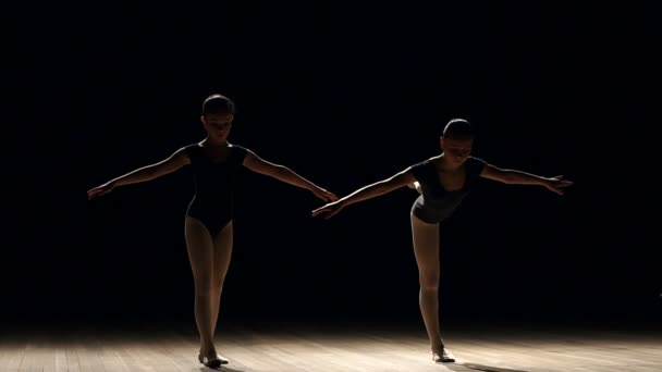 Silhouette of two ballerinas on stage.