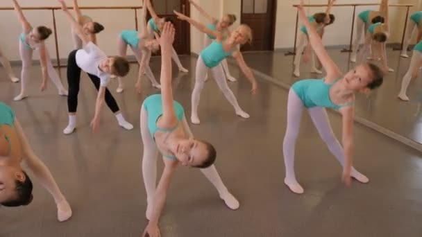 A group of children is engaged in a ballet Studio, they do stretching.