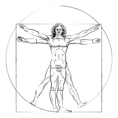 The Vitruvian man. Leonardo da Vinci 's Drawing on white, human anatomy, Vector