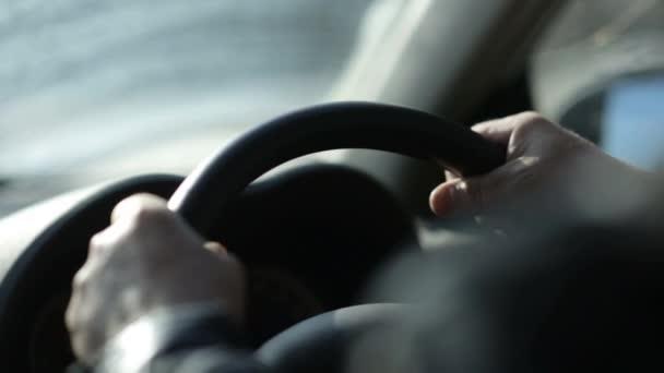 Driver Hands On Steering Wheel