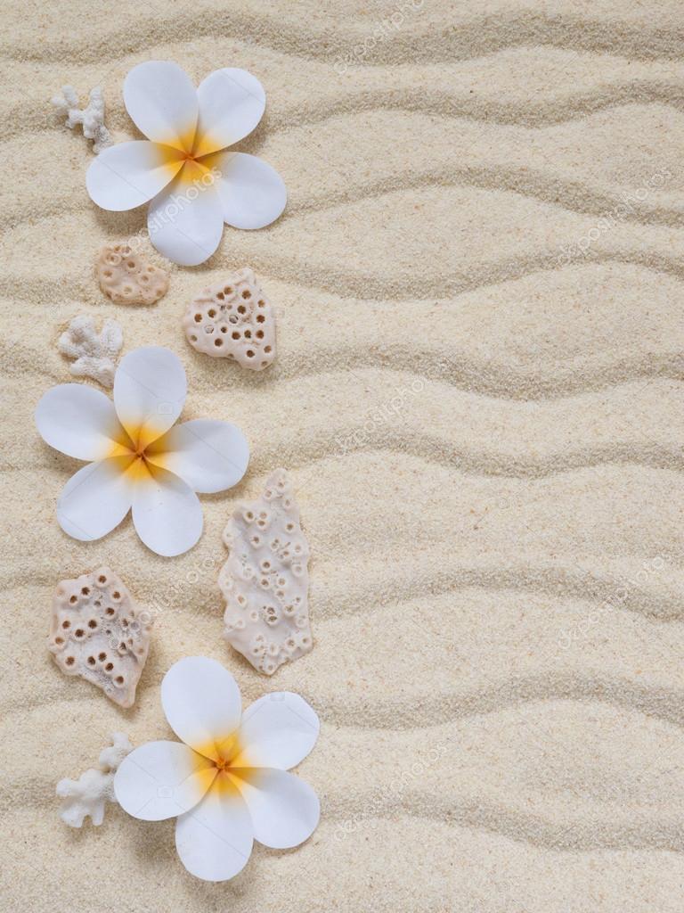 Fleurs de Tiare et les coraux sur le sable — Photographie ...