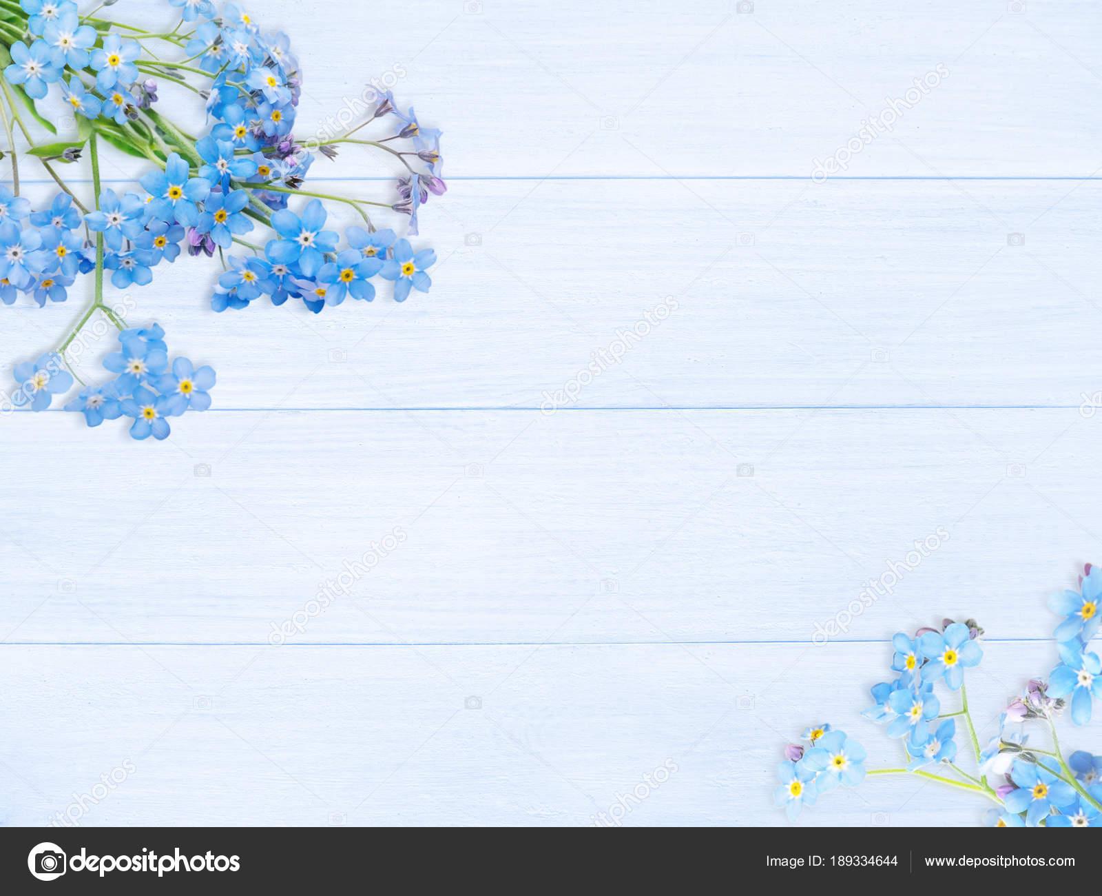 Flores Nomeolvides Azul En El Fondo De Tablas De Madera