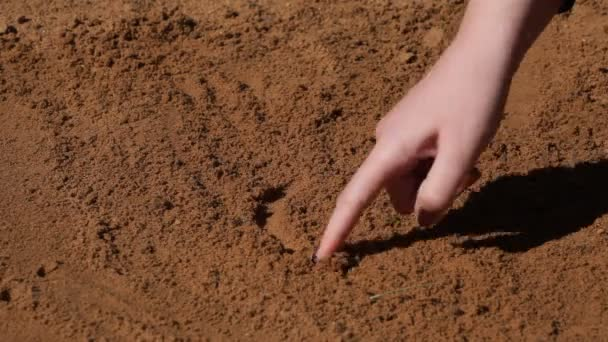 ženské prst na písku