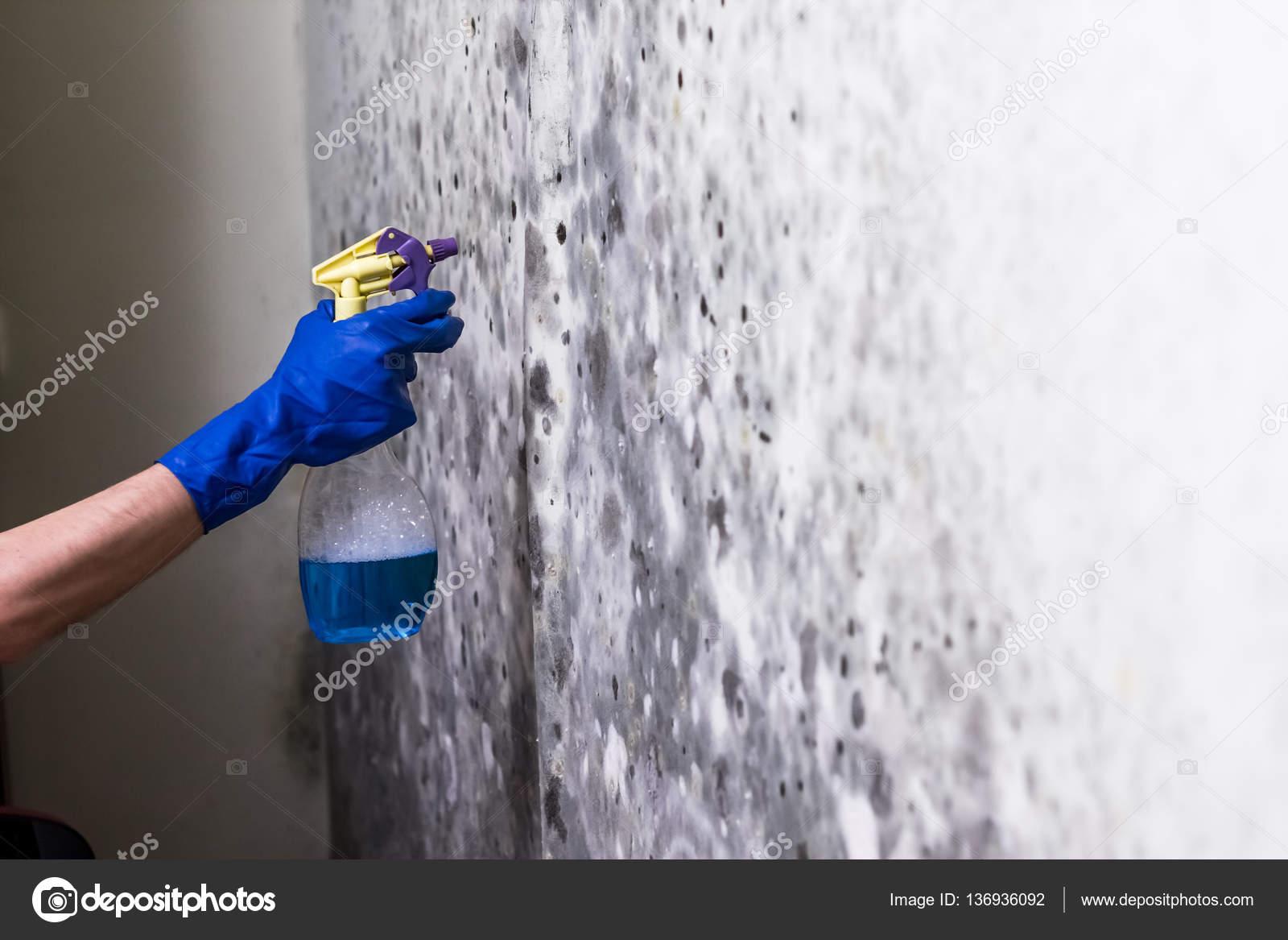 Schimmel Muur Verwijderen : Verwijderen van schimmel op de muur in de kamer u stockfoto