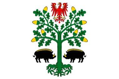 Flag of Eberswalde in Barnim of Brandenburg, Germany