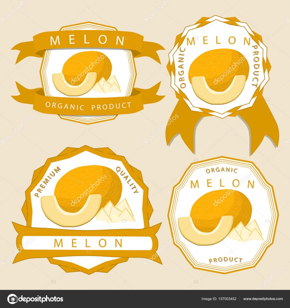 The yellow melon stock vector oleg525 157003452 vector illustration logo for whole ripe fruit yellow meloncut half sliced cantaloupe backgroundlon drawing pattern consisting of tag label natural sweet buycottarizona Image collections
